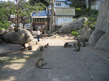 Best of Hua Hin - 17.jpg