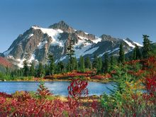 Picture Perfect, Snoqualmie National Forest, Washington.jpg