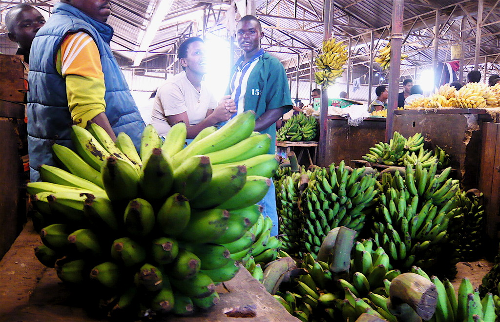 Green bananas at Kimironko market in Kigali
