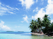 beach-island-wallpaper.jpg