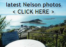 More Nelson Photos