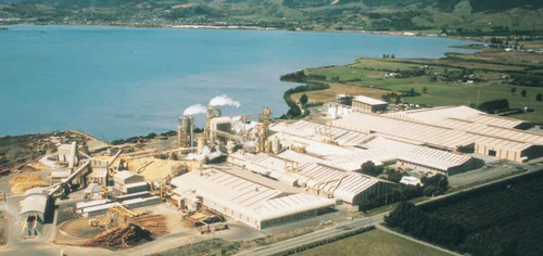 Nelson Pine Industries - one of the Worlds biggest MDF plants