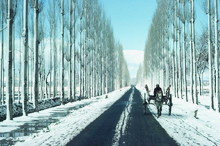 on the wat to gulmarg.
