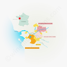 The Muscadet-appellations in Loire