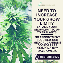 Online Medical Card Grow More Medical Marijuana Legally with Your Growers License